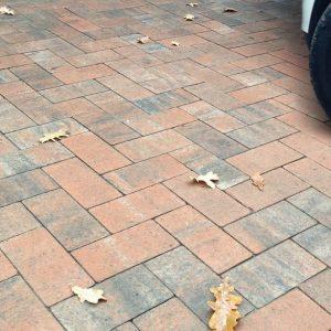 Приклад тротуарної плитки восени у Вінниці