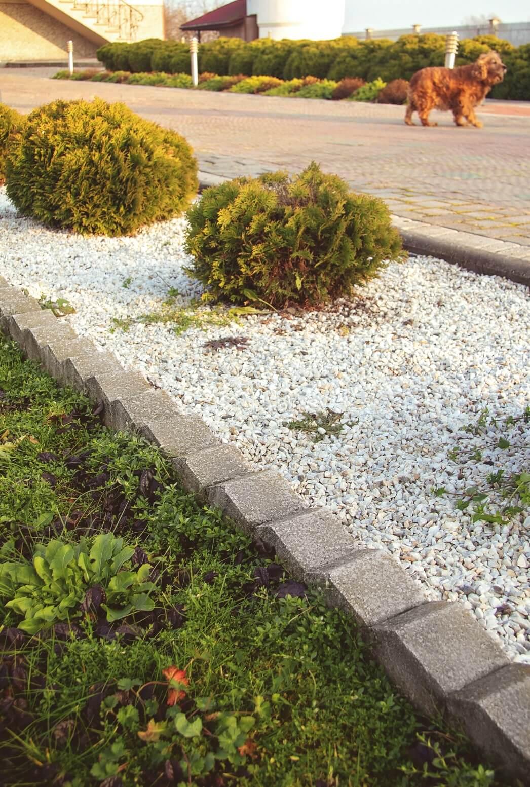 Фото бордюри від салону тротуарної плитки «Melius» Вінниця